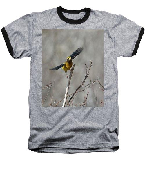 Liftoff-male Evening Grosbeak Baseball T-Shirt