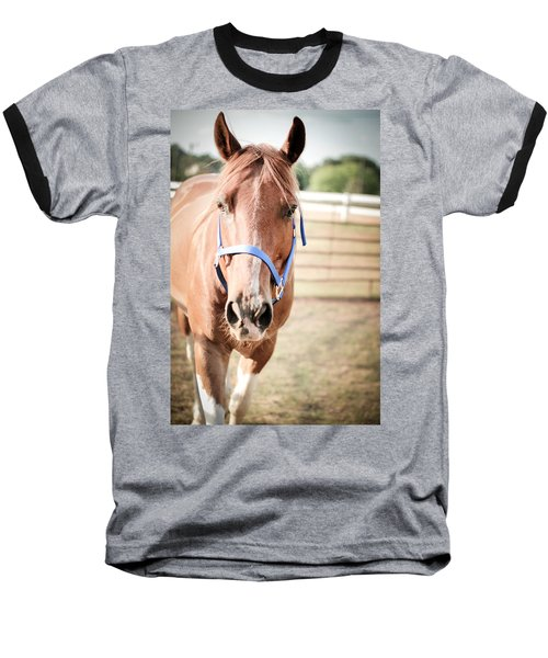 Light Brown Horse Named Flash Baseball T-Shirt
