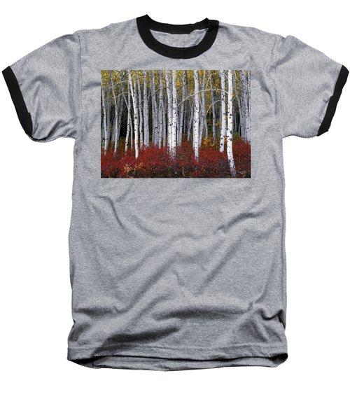 Light In Forest Baseball T-Shirt