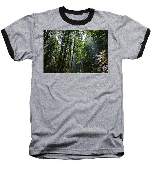 Light In The Forest Baseball T-Shirt
