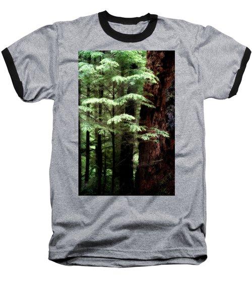 Light On Trees Baseball T-Shirt