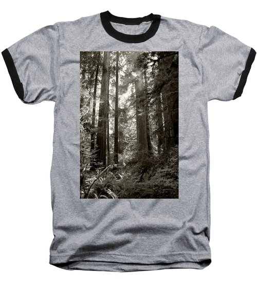 Light Through Redwoods Baseball T-Shirt