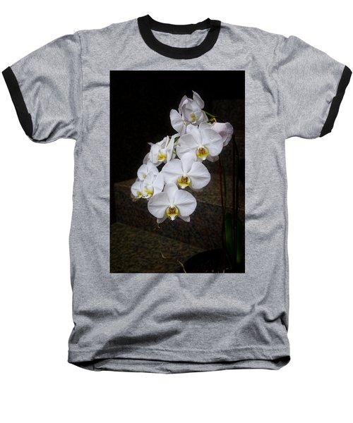 Like A Dove Baseball T-Shirt