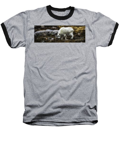 Lil' Kid Goat  Baseball T-Shirt