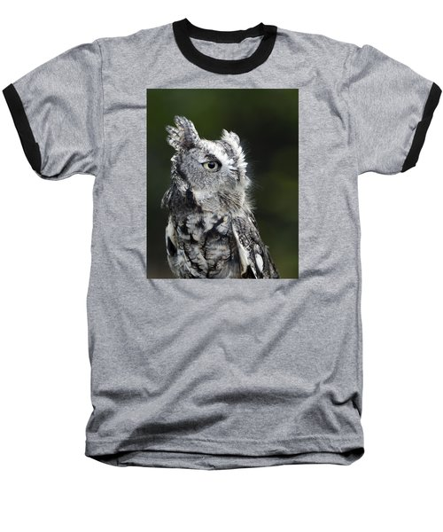Baseball T-Shirt featuring the photograph Li'l Screech by Stephen Flint