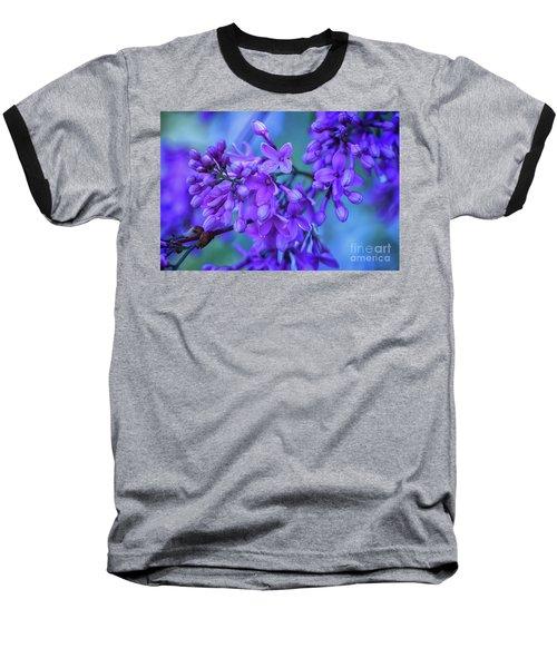 Lilac Blues Baseball T-Shirt by Elizabeth Dow
