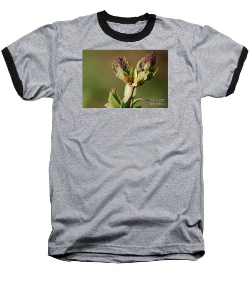 Baseball T-Shirt featuring the photograph Lilac Bud by Randy Bodkins