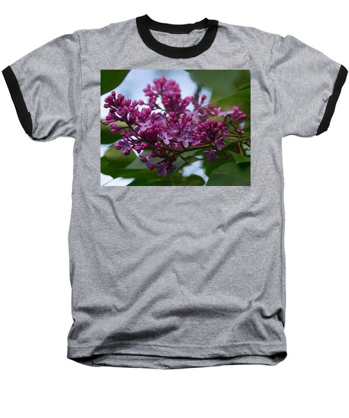 Lilac Buds Baseball T-Shirt