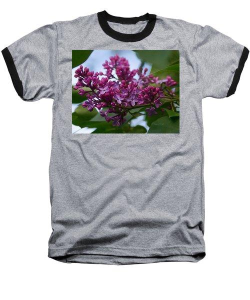 Lilac Buds Baseball T-Shirt