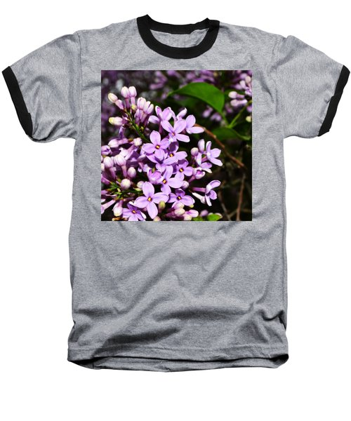 Lilac Bush In Spring Baseball T-Shirt