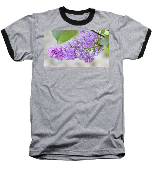 Baseball T-Shirt featuring the photograph Lilac Cluster by Skip Tribby