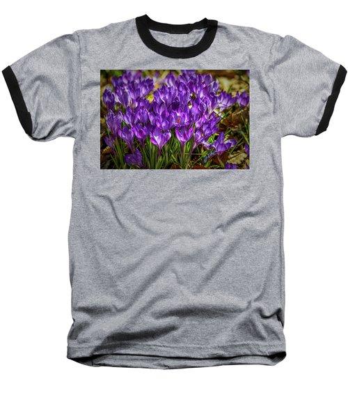 Lilac Crocus #g2 Baseball T-Shirt by Leif Sohlman
