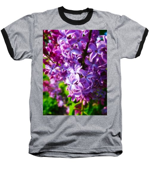 Baseball T-Shirt featuring the photograph Lilac In The Sun by Julia Wilcox