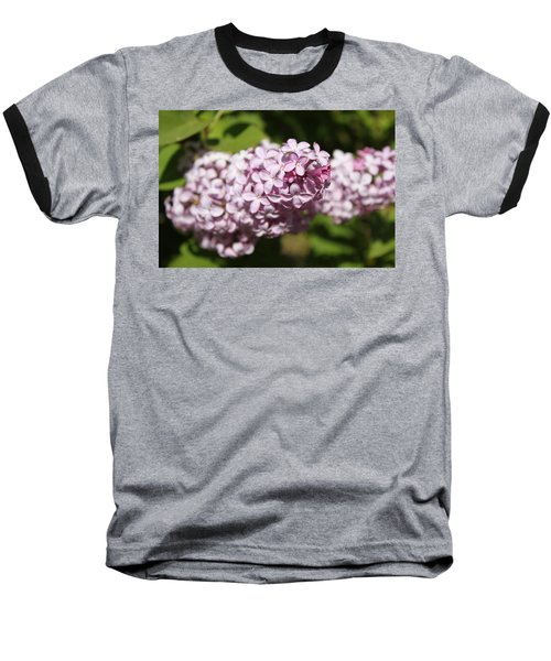 Baseball T-Shirt featuring the photograph Lilacs 5549 by Antonio Romero