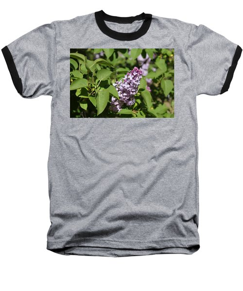 Baseball T-Shirt featuring the photograph Lilacs 5551 by Antonio Romero
