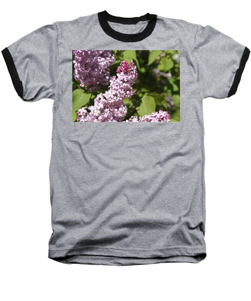 Baseball T-Shirt featuring the photograph Lilacs 5552 by Antonio Romero