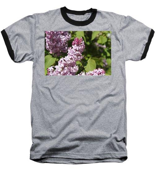 Lilacs 5552 Baseball T-Shirt