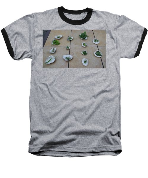 Lilly's Herb Seashore Seashells Baseball T-Shirt by Greg Graham