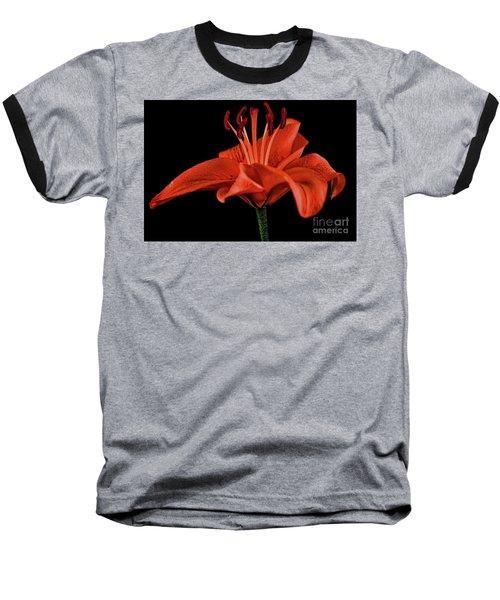 Lily 11018-1 Baseball T-Shirt