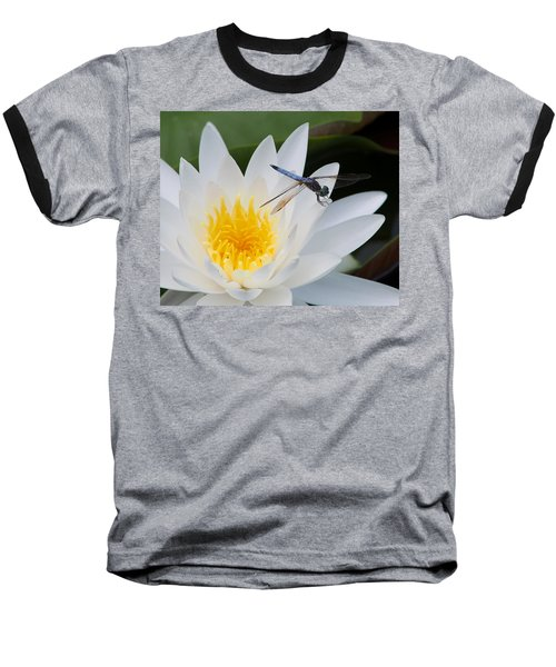 Lily And Dragonfly Baseball T-Shirt