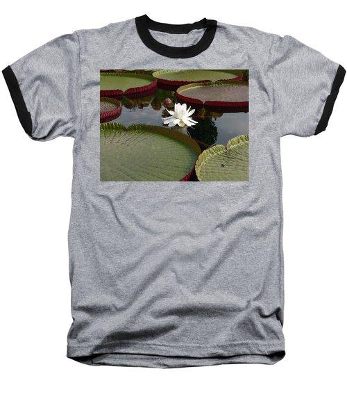 Lily Baseball T-Shirt by David Bearden