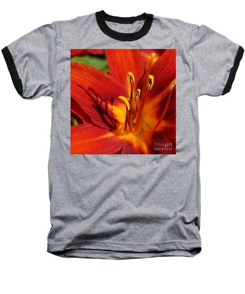 Lily Shadows Baseball T-Shirt