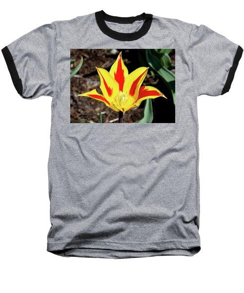 Lily Tulip Baseball T-Shirt