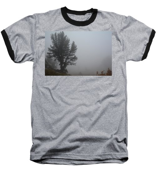Baseball T-Shirt featuring the photograph Limber Pine In Fog by Jenessa Rahn