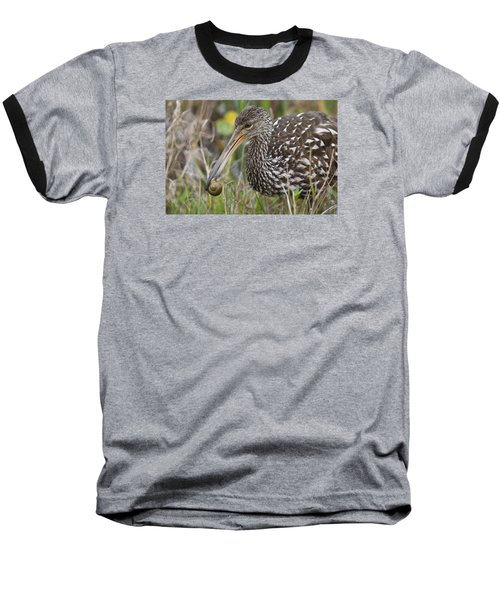 Limpkin, Aramus Guarauna Baseball T-Shirt