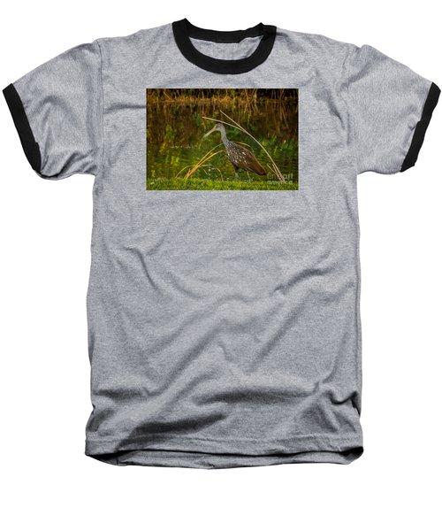 Limpkin At Water's Edge Baseball T-Shirt by Tom Claud