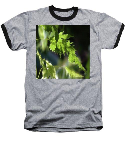 Linden Leaf - Baseball T-Shirt