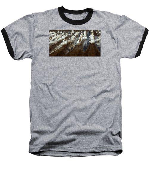 Lines Of Snowgeese Baseball T-Shirt by Karen Molenaar Terrell