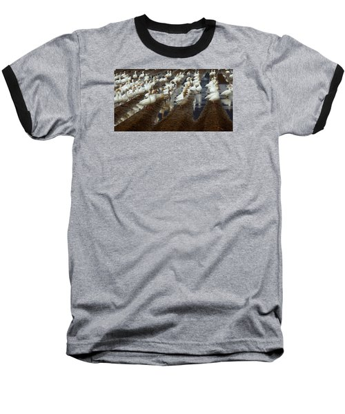 Lines Of Snowgeese Baseball T-Shirt