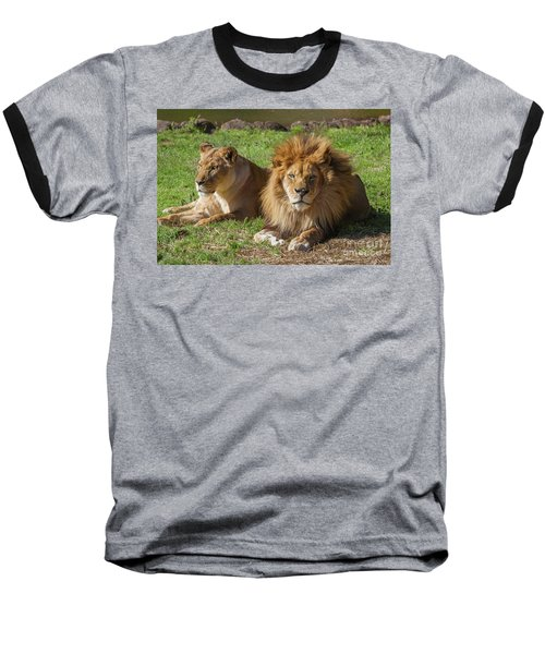 Lion And Lioness Baseball T-Shirt