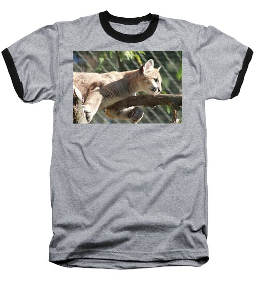 Baseball T-Shirt featuring the photograph Lion Around by Laddie Halupa