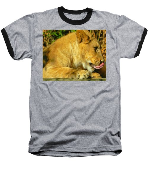 Lion Cub - What A Yummy Snack Baseball T-Shirt by Emmy Marie Vickers