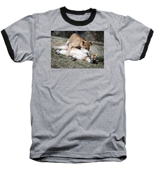 Lion Cubs At Play Baseball T-Shirt