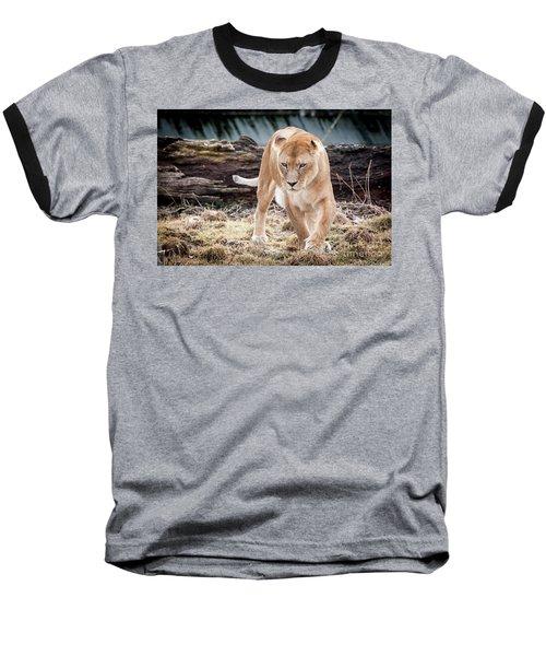 Lion Eyes Baseball T-Shirt
