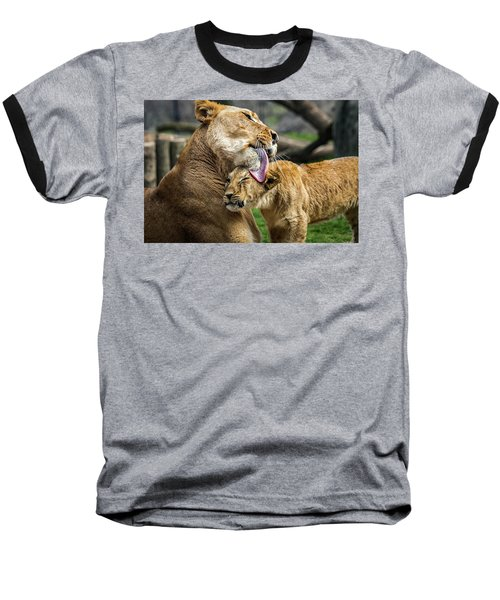 Lion Mother Licking Her Cub Baseball T-Shirt