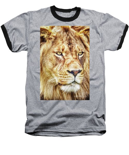 Lion-the King Of The Jungle Large Canvas Art, Canvas Print, Large Art, Large Wall Decor, Home Decor Baseball T-Shirt by David Millenheft