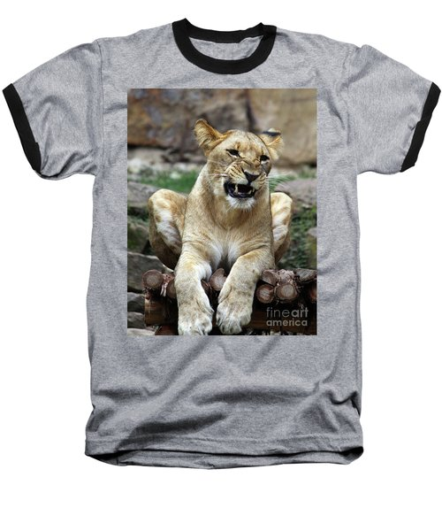 Lioness 2 Baseball T-Shirt by Inspirational Photo Creations Audrey Woods