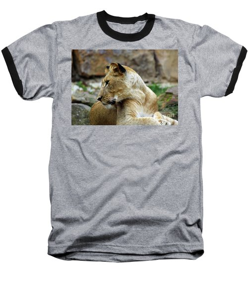 Lioness Baseball T-Shirt by Inspirational Photo Creations Audrey Woods