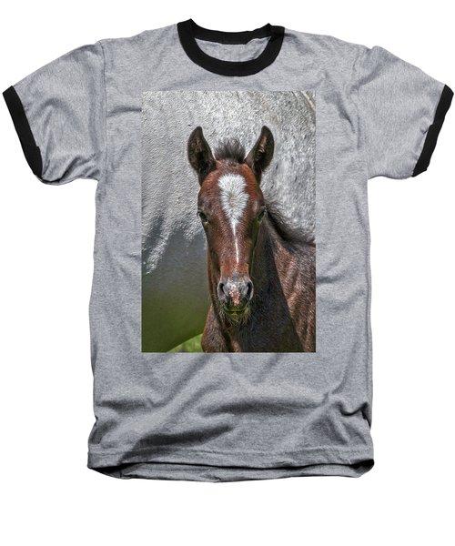 Baseball T-Shirt featuring the photograph Lipizzan Horses #2 by Stuart Litoff