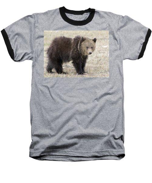 Little America Cub Baseball T-Shirt