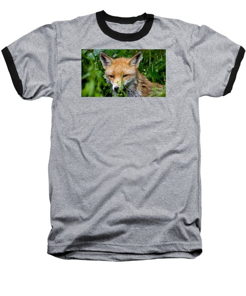 Little Baby Fox Baseball T-Shirt