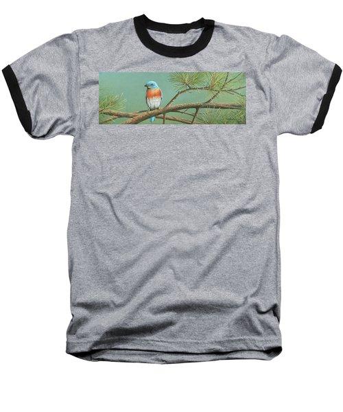 Little Boy Blue Baseball T-Shirt