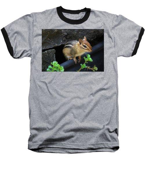 Little Chipmunk  Baseball T-Shirt