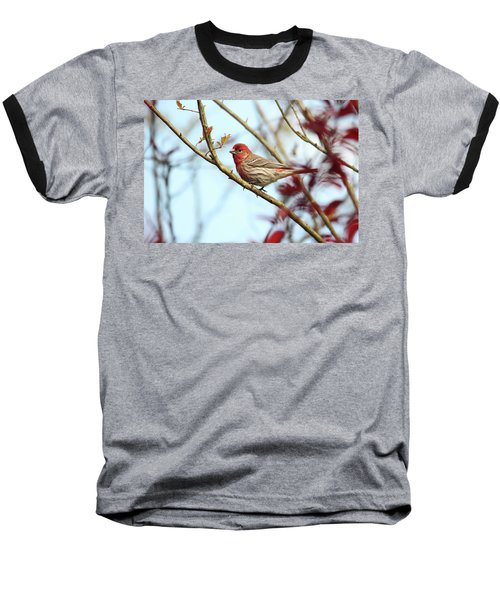 Little Finch Baseball T-Shirt