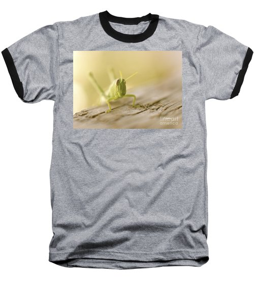 Little Grasshopper Baseball T-Shirt