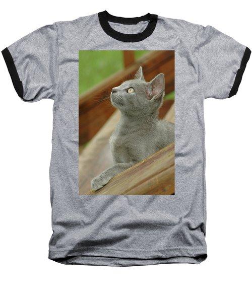 Little Gray Kitty Cat Baseball T-Shirt